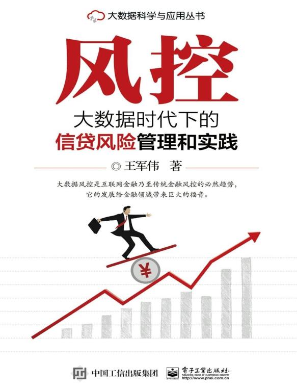 风控:大数据时代下的信贷风险管理和实践(书)
